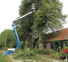 Landschapsverzorging hoogwerker